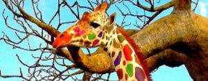 Donderdag 13 juli Plaatje: Gekleurde giraffes