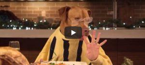 Maandag 27 november Filmpje: Hondenkerstdiner