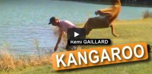 Maandag 12 februari Filmpje: Kangoeroestreken