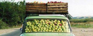 Maandag 9 september Plaatje: Fruitvervoer