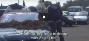Zondag 29 september Filmpje: Cabrio met stront