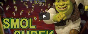 Zaterdag 29 februari Filmpje: Shrek is overal!